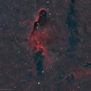 IC 1396 • Elephant's Trunk Nebula in HOO,                                Douglas J Struble