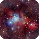 Cone Nebula and Christmas Tree,                                Guillermo Gonzalez