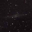 NGC 891,                                Giuseppe Nicosia