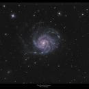 The Pinwheel Galaxy- M101,                                William Maxwell