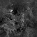 Tulip Nebula Area Wide Field, Ha,                                Stephen Garretson