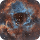 Reprocessed Rosette Nebula in Hubble Palette,                                Ethan Wong
