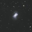 NGC 4449 crop,                                Detlef Möller