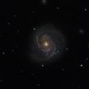 Messier 100,                                Mark Spruce