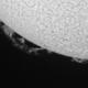 SunHa - 9 August 2015,                                Roberto Botero