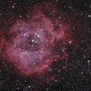 [Neb] NGC2244 Nébuleuse de la Rosette @Calern,                                Raypulsif