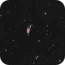 ARP84 - NGC5395 /5394  - the Heron  Galaxy,                                Arnaud Peel