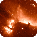 A fanciful Horsehead Nebula with the Flame Nebula,                                John O'Neal, NC Stargazer