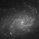 M33 LUM,                                Dan Wilson