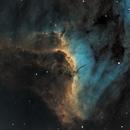 Pelican Nebula,                                Frank Kane
