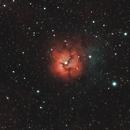 The Trifid Nebula,                                Julio Cruz