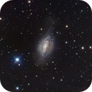NGC 3521,                                Dean Salman