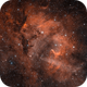 The Lion Nebula in HOO,                                Alex Roberts