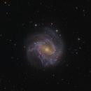 Messier83,                                DaveMoulton
