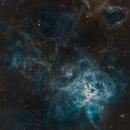 Tarantula Nebula (NGC 2070) Narrowband closeup (iTelescope T33),                                alexhollywood