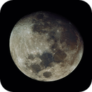 Moon in Real Colors,                                Ariel Cappelletti