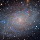 The Triangulum Galaxy,                                Richard S. Wright Jr.