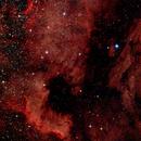 NGC7000,                                sungazer