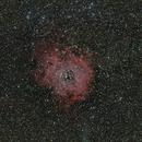 La nébuleuse de la rosette NGC 2237,                                Stéphane GONZALEZ