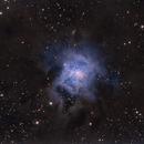 NGC 7023 - The Iris Nebula,                                Tim