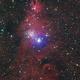 NCG 2264 Christmas Tree Cluster and Cone Nebula HaLRGB,                                Trevor Gunderson