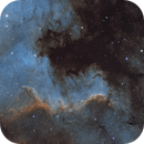 The great wall in the north america nebula,                                Sven Hoffmann