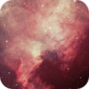 North American Nebula--Pink Champagne on Ice,                                Rumi