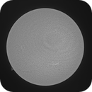 Sun in H-Alpha 23th of April 2021,                                Arne Danielsen
