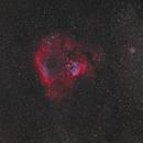 NGC 7822 widefield,                                U-ranus