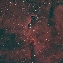 Elephant's Trunk Nebula,                                Nick Carr