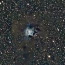 NGC 7023 (Iris Nebula),                                Jared Wellman