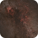 Cygnus Widefield,                                ThomasR