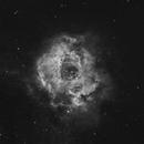 NGC 2237 - The Rosette Nebula in Ha,                                Jimmy Eubanks