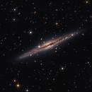 NGC 891,                                Alessandro Merga