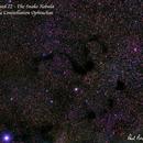 Barnard 72 - The Snake Nebula,                                Paul Borchardt