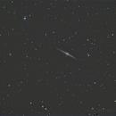 NGC 4565 - Needle Galaxy,                                Michael Rector