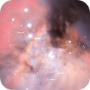 Messier 42 - Protoplanetary Disk and HH Objects,                                Arno Rottal
