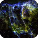 A Spooky Knot in the Eastern Veil,                                Frank Kane