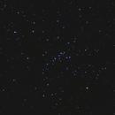 M48,                                Gary Imm