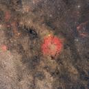 IC1396WideField,                                lizarranet