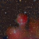 IC 1274,                                Fabian Rodriguez Frustaglia