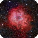 Rosette Nebula NGC2244,                                LB Zhang