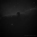 IC434 - The Horsehead Nebula,                                drksky