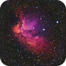 The Wizard Nebula,                                Spencer Hochstetler