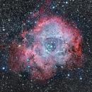 Caldwell 49 Rosette Nebula,                                Jim Lafferty