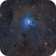 NGC 7023 The Iris Nebula,                                Chuck Manges