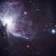 Orion Nebula / Messier 42,                                bubu_77
