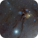 IC 4604 / IC 4592 -  Rho Ophiuci  and Blue Horsehead in 70 mm,                                Ariel Cappelletti