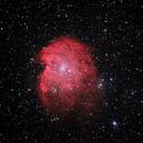 Sh2-252 Nebulosa Testa di Scimmia,                                Gianni Carcano
