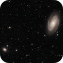 M81 | Bode`s Galaxy,                                Felix